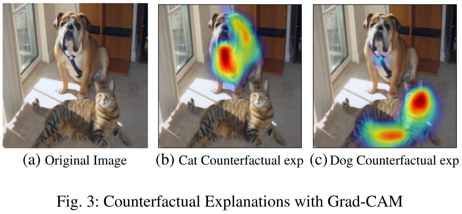 출처: Grad-CAM: Visual Explanations from Deep Networks via Gradient-based Localization